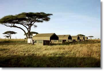 Serengeti Safaris und Badeaufenthalt Sansibar Camping Safaris oder mit Unterkunft