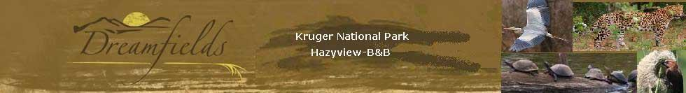 hazyview unterkunft kruger national park Übernachtungen im bb