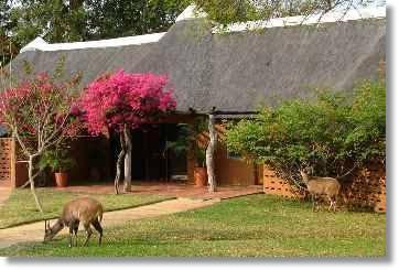 Accommodation Kruger National Park