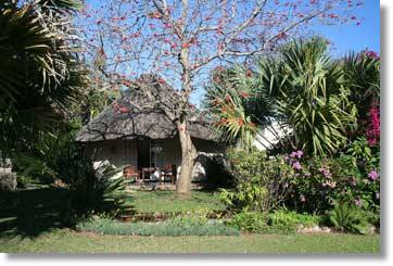 Mpumalanga Accommodation Kruger National Park Guest House Hazyview B&B