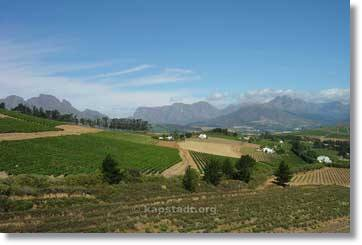 South Africa Tours - Garden Route Wine Region