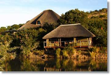 Shamwari Game Reserve Bayethe Lodge